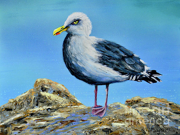 Seagull Lookout by Mary Scott